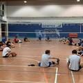 Volley:  il ritorno in campo