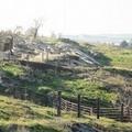Finanziamento per il progetto C.ur.A. (Corridoio Ecologico Urbano Archeologico)