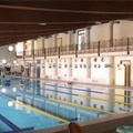 Gare Provinciali di Nuoto