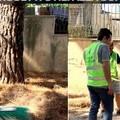 Canosa: primi interventi di manutenzione di parchi e giardini pubblici