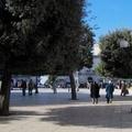 50 anni della Pro Loco di Canosa di Puglia