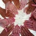 Adesione della Provincia Bat al Servizio di Volontariato Europeo