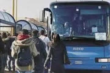 STP bus