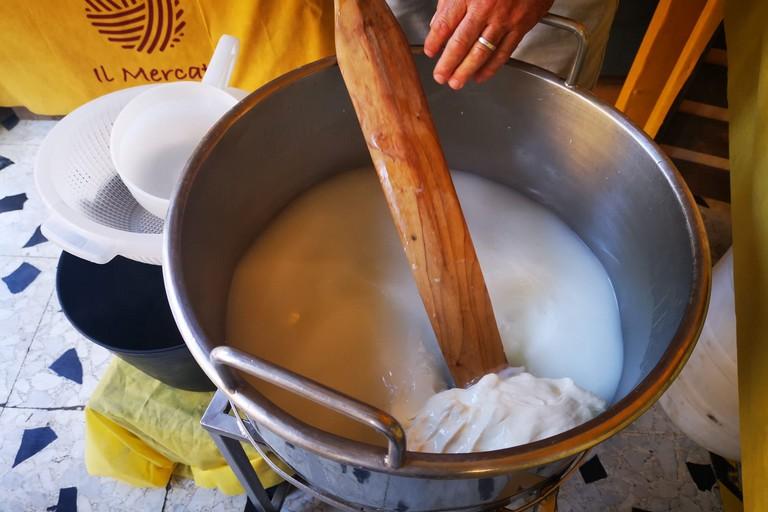 Mozzarella Latte