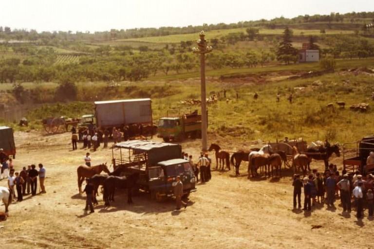 Canosa Costantinopoli Fiera del Bestiame