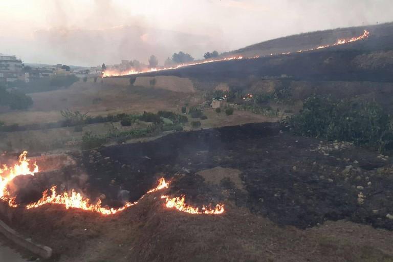 Canosa Incendio collina via Corsica
