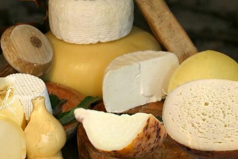 Puglia formaggi