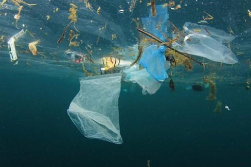Mare rifiuti di plastica