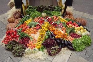 Primo incontro tematico sull'agricoltura