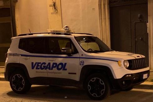 Vegapol