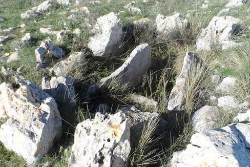Necropoli San Magno Corato