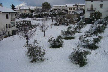 Neve Canosa
