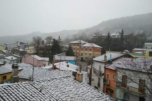 2020 Neve Gargano