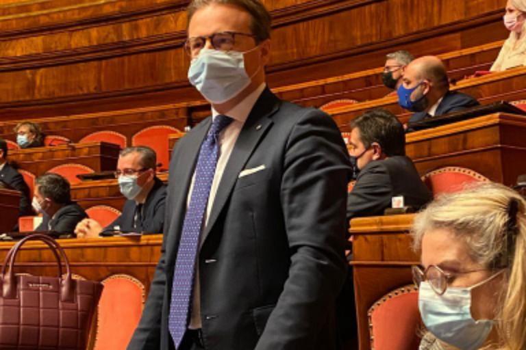 Senatore Damiani